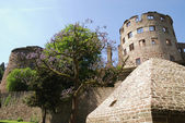 Heidelberg castle — Stock Photo