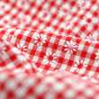 Royalty-Free Stock Photo: Checkered Textile