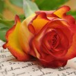 Rose on a Diary — Stock Photo #6399787