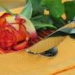 Romantic Place Setting — Stock Photo