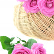 Stock Photo: Pink Roses in a Wicker Basket