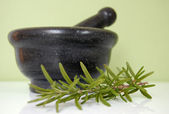 Mortar and Rosemary — Stockfoto