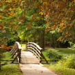 Wooden Bridge — Stock Photo #6410817