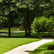 Path through the Park — Stock Photo #6410908