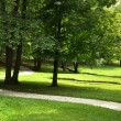 Path in the Park — Stock Photo #6410942