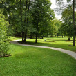 Path in the Park — Stock Photo #6410983