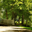 Path in the Park - 