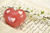 Corazón en diario — Foto de Stock