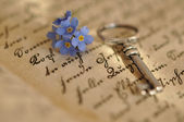 Key and Forget-me-not — Stock Photo