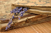 Lavender on Old Books — Stock Photo