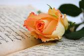Lectura romántica — Foto de Stock