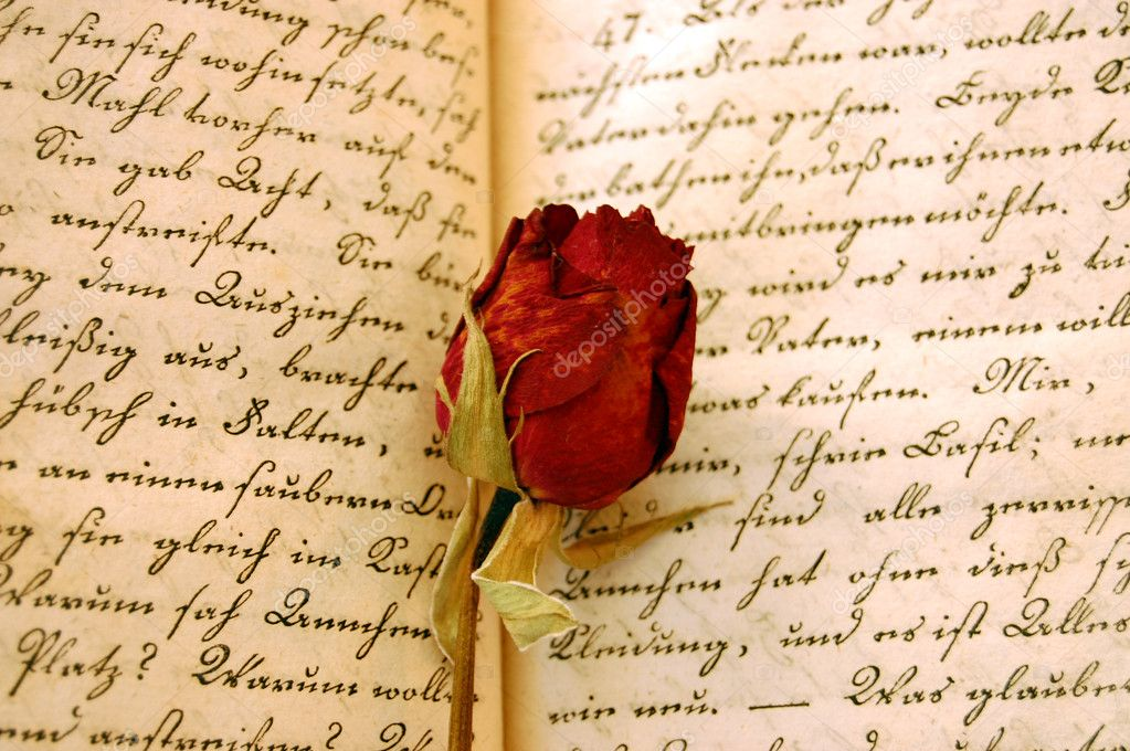 Dried red rose on an open handwritten old book  — Stock Photo #6419351