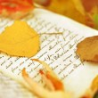 Fall Leaves on Diary — Stock Photo