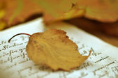 Fall Leaf on Diary — Stock Photo