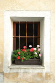 Old Window, Slovenia — Stock Photo