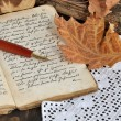 Stock Photo: Autumn Diary