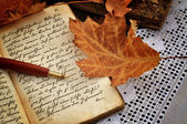 Autumn Diary — Stock Photo