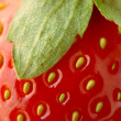 Strawberry closeup — Stock Photo