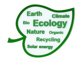 Speech bubble or tag cloud with ecological words — 图库照片
