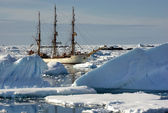 Sailing ship among the icebergs — Stockfoto