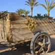 Old wooden wheelbarrow on the beach — Stock Photo