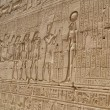 Hieroglyphic carvings in an Egyptian temple wall — Foto de Stock