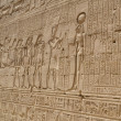 Hieroglyphic carvings in an Egyptian temple wall — Stock fotografie