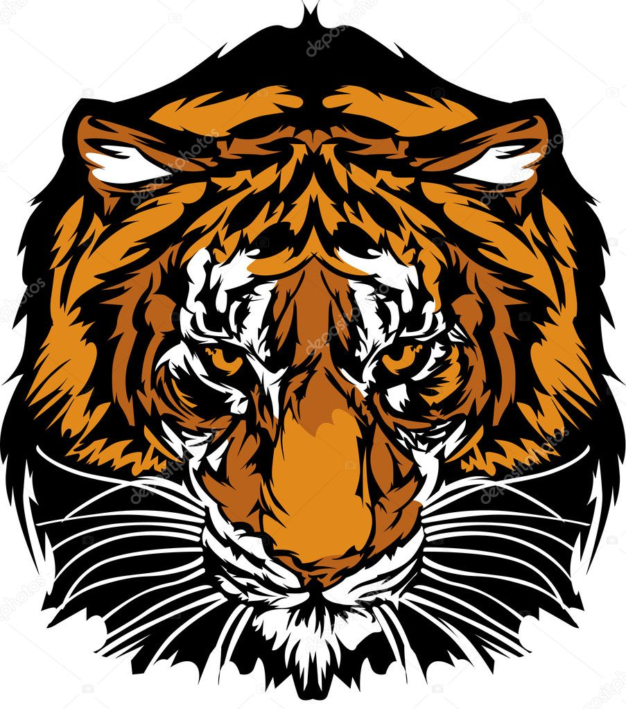 Graphic Mascot Image of a Tiger Head with Whiskers — Stock Vector #6385749