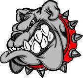 Ilustración de cara de dibujos animados de bulldog — Vector de stock