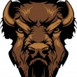Buffalo Bison Mascot Head Graphic — Stock Vector