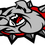 Bulldog Mascot Head Vector Illustration — Stock Vector