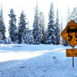 Stock Photo: Icy Patches warning sign