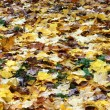Yellow Maple leaves - Photo