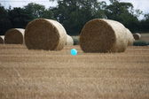 Bales in the summer sun — Stock Photo