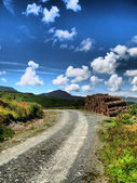 Road with a blue sky — Stock Photo