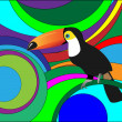 Stock Vector: Toucan.