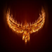 Phoenix from fire with wings — Foto Stock