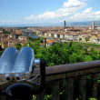Stock Photo: Binocolo e panoramdi Firenze