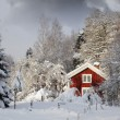 Red cottage in snowy landscape — Stockfoto