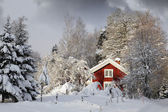 Red cottage in snowy landscape — Stock Photo