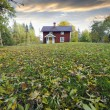 Red cottage and autumn leaves — Stock Photo