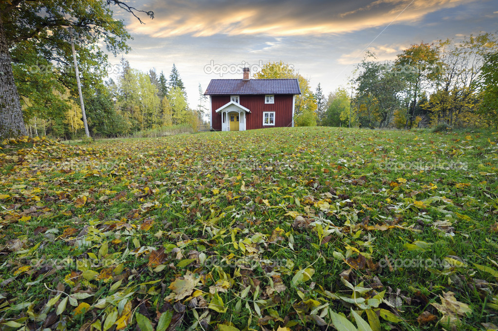 Small red cottage surrounded by autumn leaves trees and forest.wideangle perspective from sweden — Stock Photo #6506782