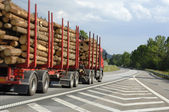 Timber truck on the move — Stock Photo
