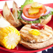 Fourth of July Picnic - Turkey Burger - Stock Photo