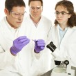 Stock Photo: Medical Research Team
