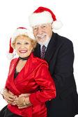 Senior koppel kerstmis portret — Stockfoto