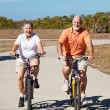 Active Retired Seniors on Bikes — Stock Photo