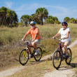 Safe Senior Cyclists — Stockfoto