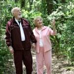 Active Seniors Walk in Woods — Stock Photo