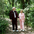 Senior Stroll in Park — Stock Photo